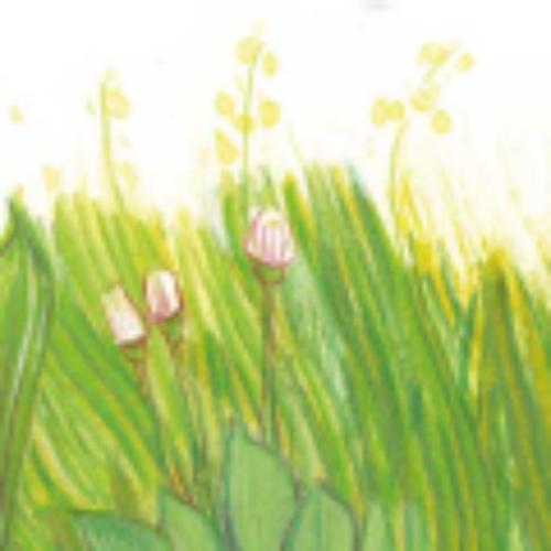 Garten entdecken