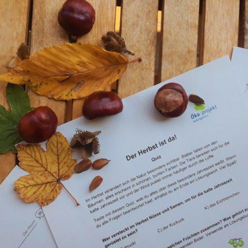 "Naturerlebnis-Set: ""Herbst-Erleben"""