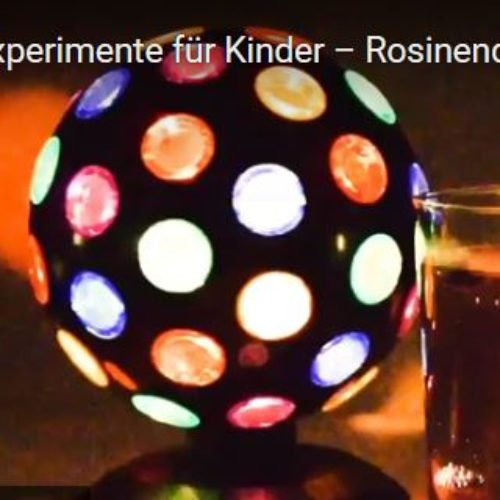 Experiment für zu Hause: Rosinendisko